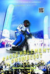 Snowscoot affiche cruzado 2015 n 2